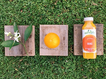 The Squeeze On Citrus Sourcing