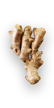 Ginger - A ginger plant can grow to be upwards of 4ft tall! - via: Evolution Fresh