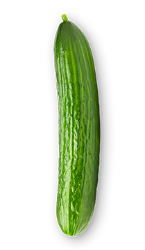 Cucumber - Harvesting cucumbers regularly can help the plant create more and more fruits. And the larger leaves of the cucumber plant are also beneficial, because they are used to help to provide shading for those developing fruits.  - via: Evolution Fresh