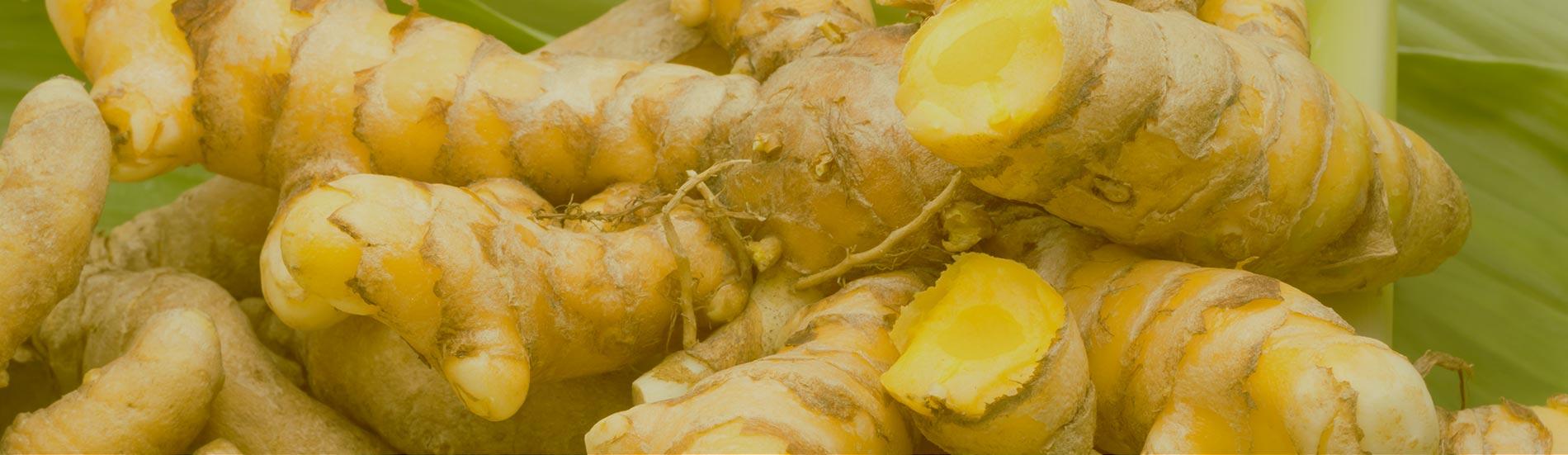 Turmeric Pineapple Coconut Kombucha
