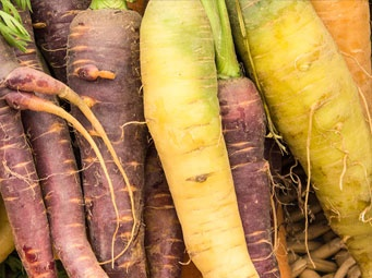 DELICIOUSLY QUIRKY AND PERFECTLY IMPERFECT: THE STORY OF UGLY VEG